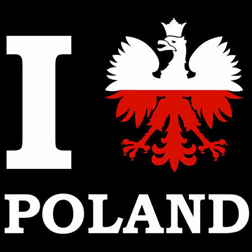 T-shirt T131 I Love Poland